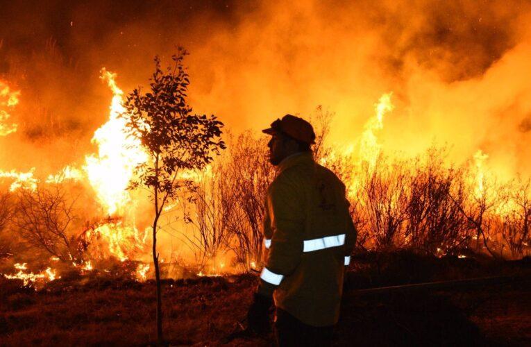 Estado de incendios en el territorio provincial