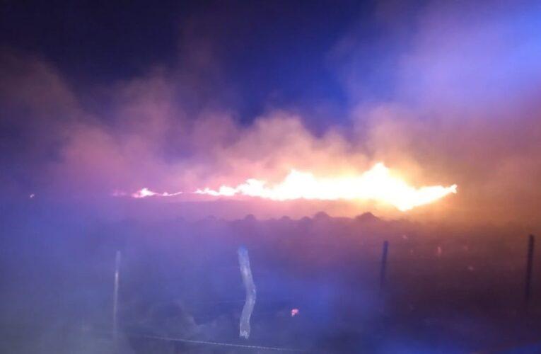 Este fin de semana, bomberos de distintas localidades extinguieron incendios forestales