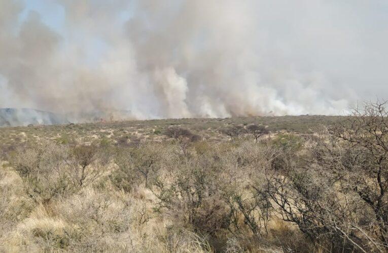 Bomberos y brigadistas combaten un incendio en Donovan