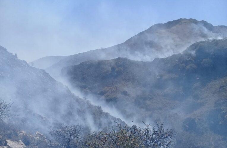Lucha contra el fuego: combaten cinco incendios en simultáneo