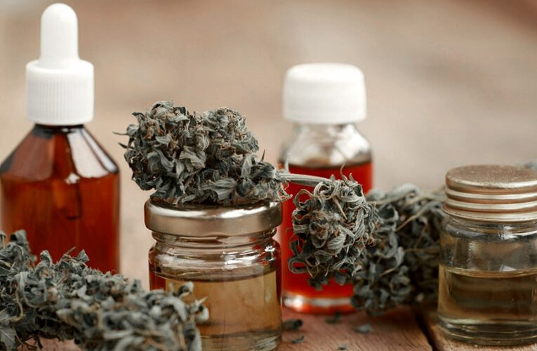 El Trapiche: La Municipalidad propone regular el uso de Cannabis para uso medicinal
