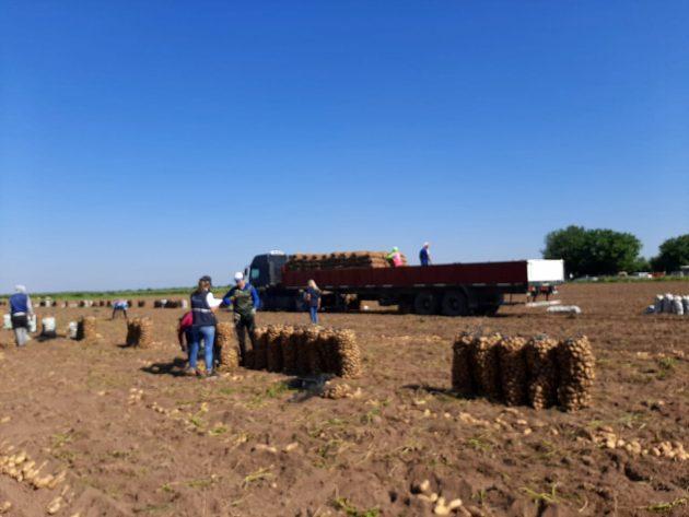 En un campo en Candelaria, detectaron 32 trabajadores en condiciones laborales precarias