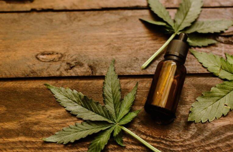 Este sábado comienza el 1er Congreso Integral de Cannabis Medicinal en San Luis