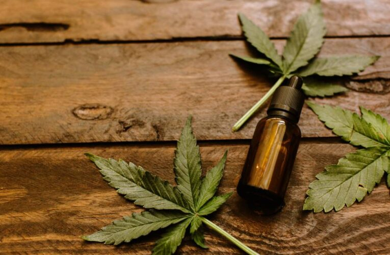 Las respuestas positivas del cannabis medicinal a la epilepsia refractaria superaron el 80%