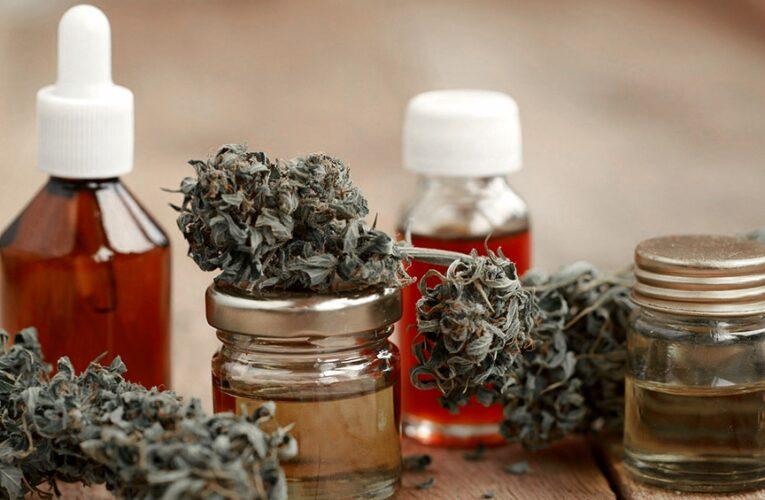 El Trapiche: Se realizará el 1re. Congreso Integral de Cannabis Medicinal