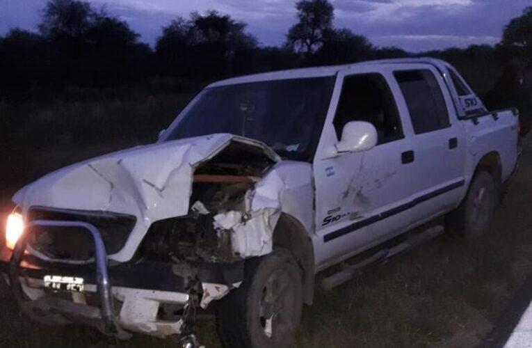 Una camioneta chocó con dos animales vacunos en Ruta 20