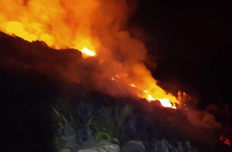 Nogolí: Bomberos sofocaron un incendio forestal